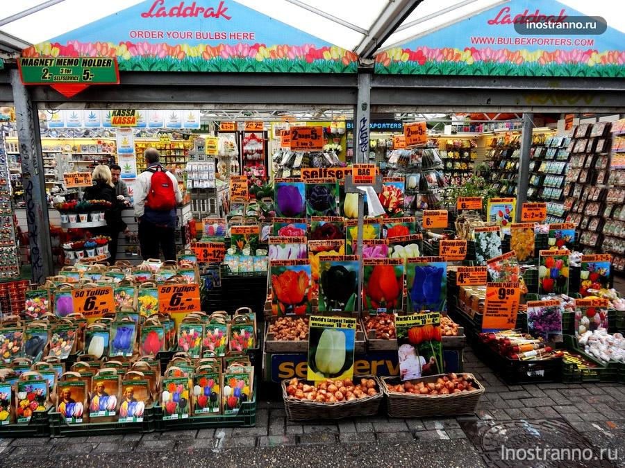 Амстердам рынок цветов