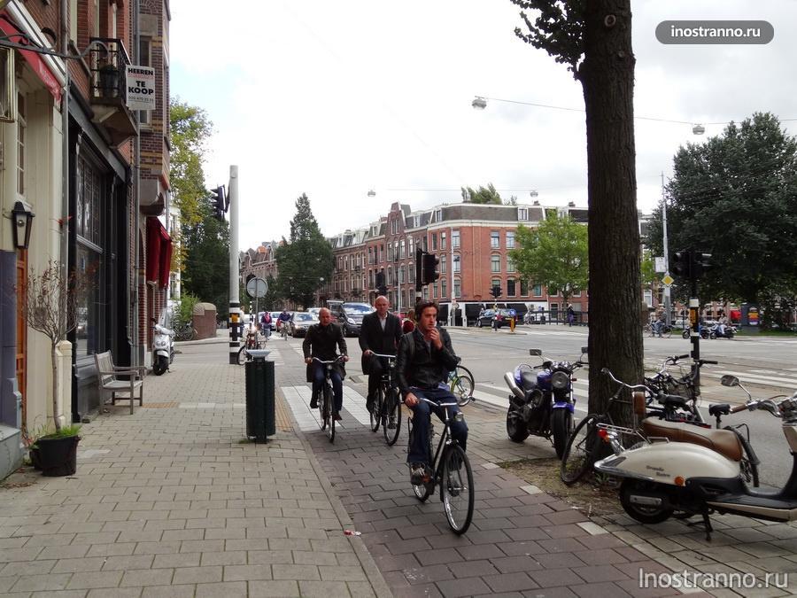 Голландские велосипедисты