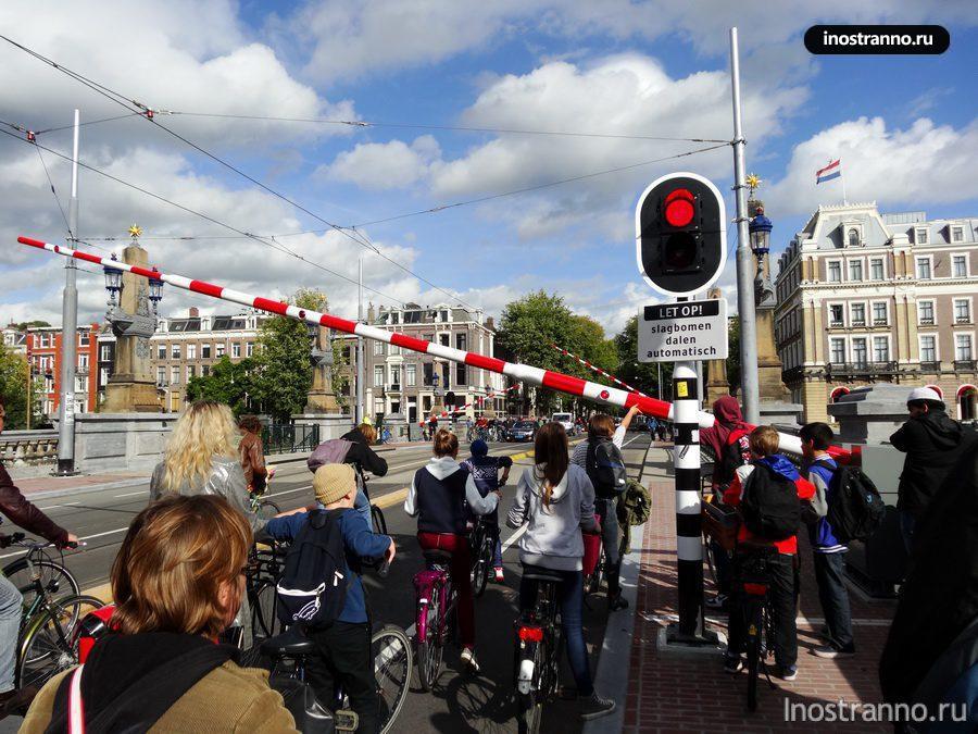 Толпа велосипедистов в Амстердаме