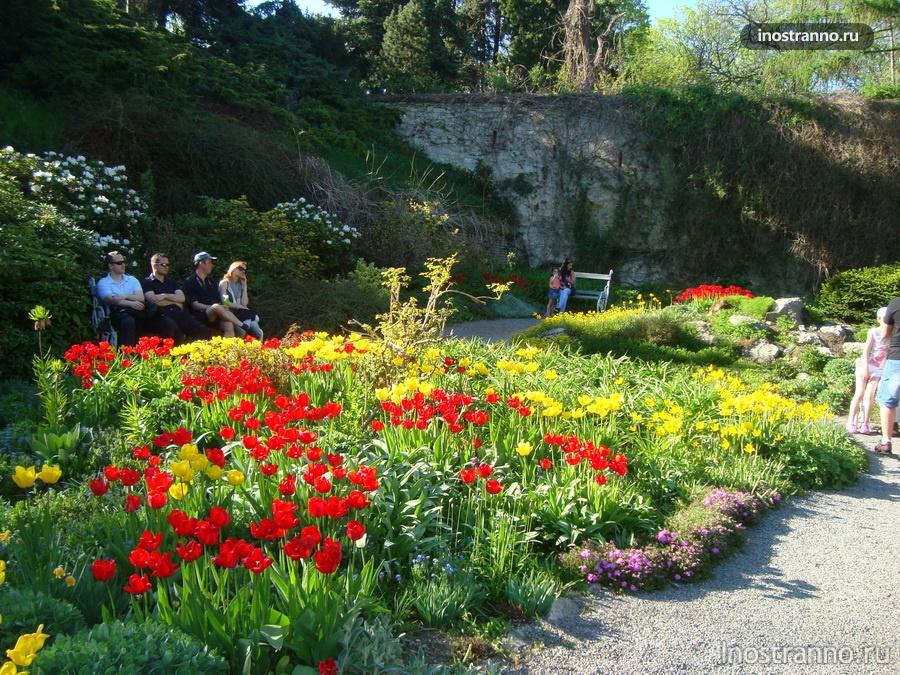 весна в Праге