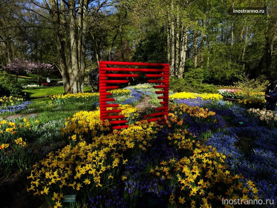 цветы в парке кекенхоф
