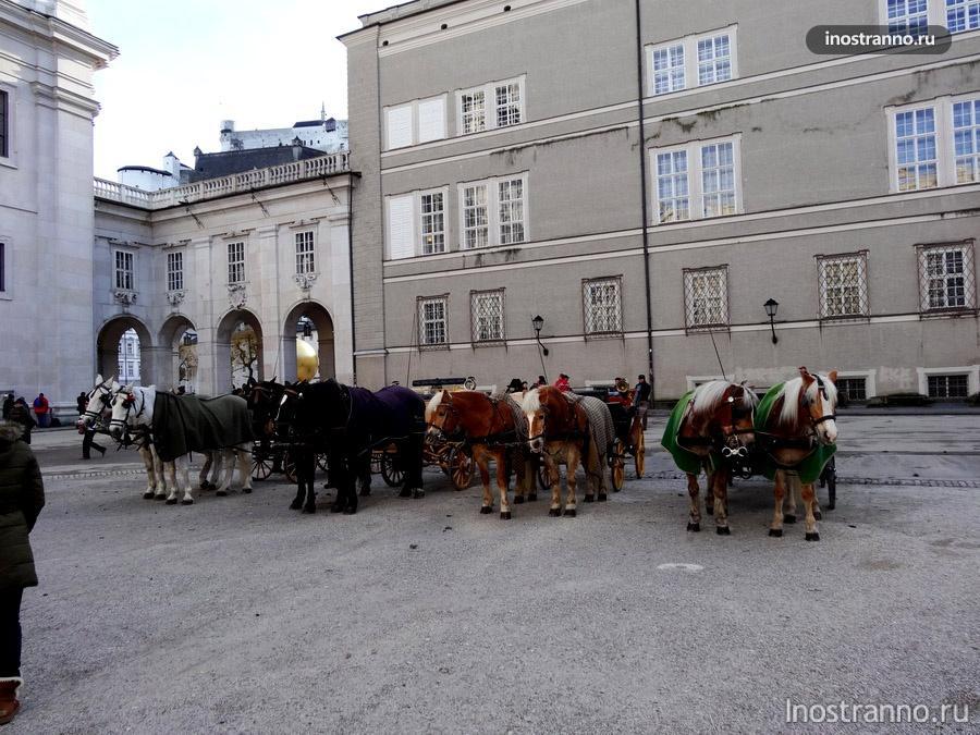 катание на лошадях в Зальцбурге