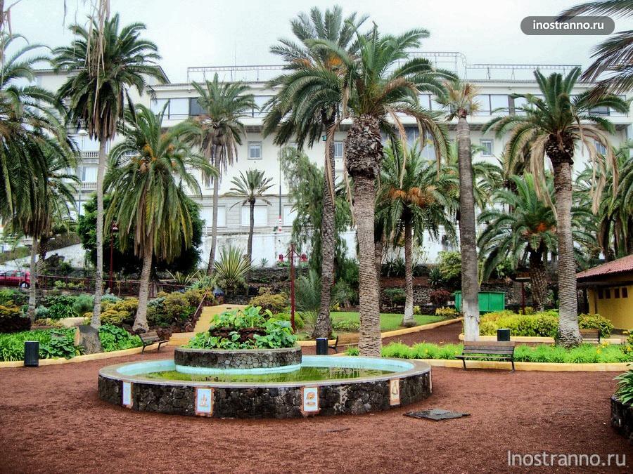 пальмы на острове тенерифе