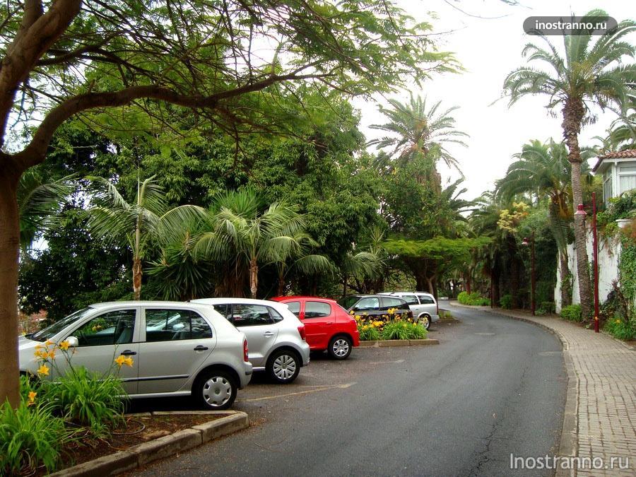 пальмы и машины на тенерифе