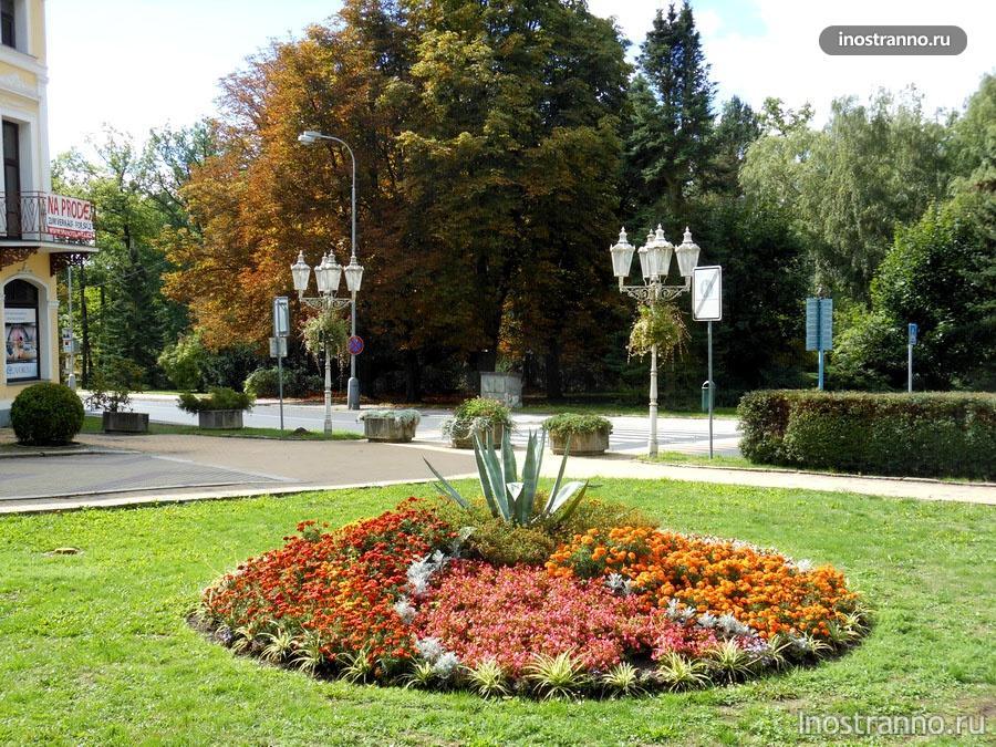 цветы курорт франтишковы лазне