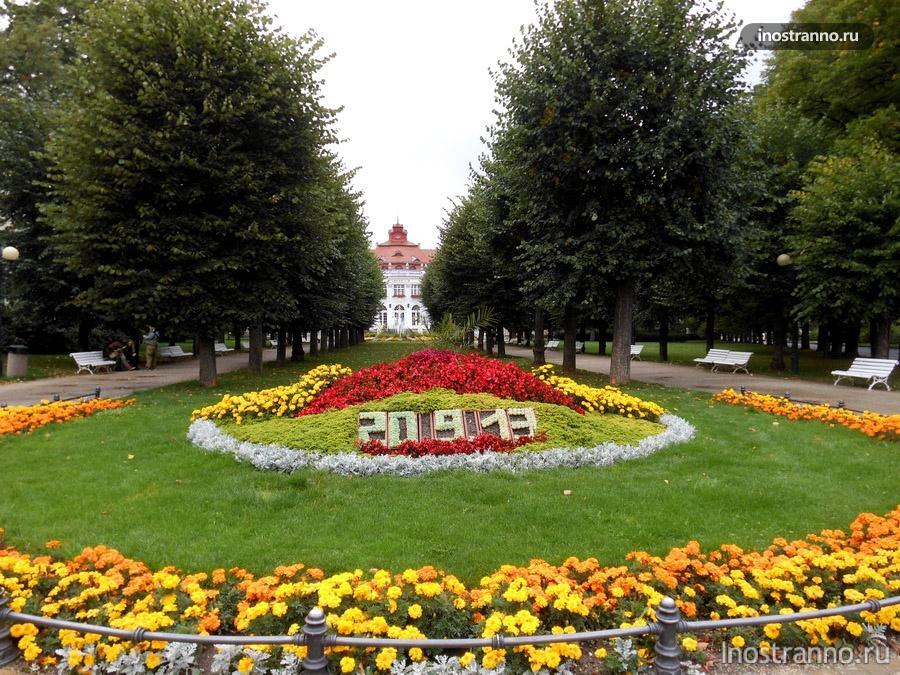 цветы в чехии