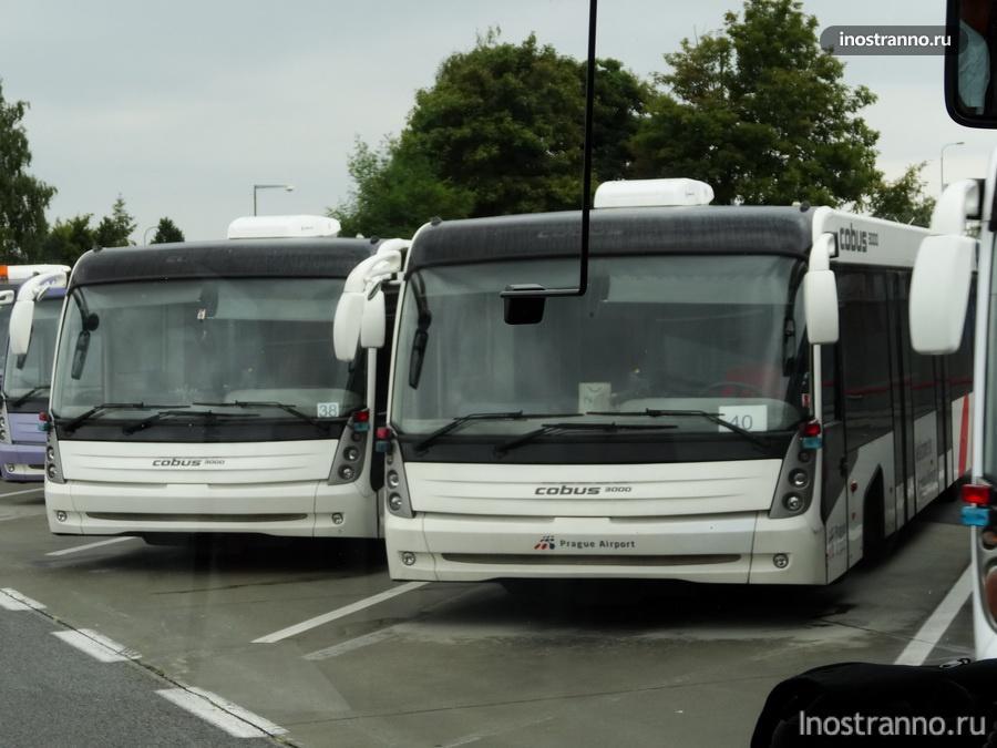 аэропортный автобус Cobus