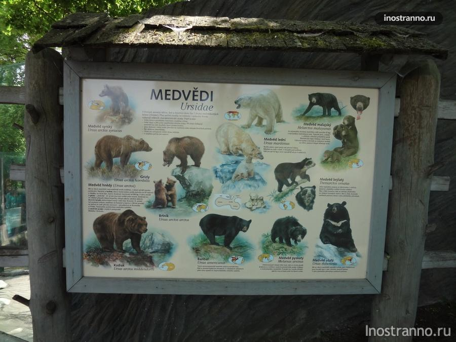 Прага Зоопарк информация о животных