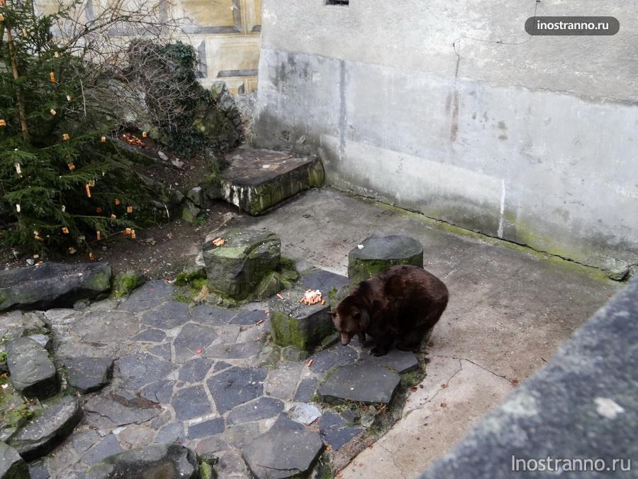Плащевой мост и медведи в Крумлове