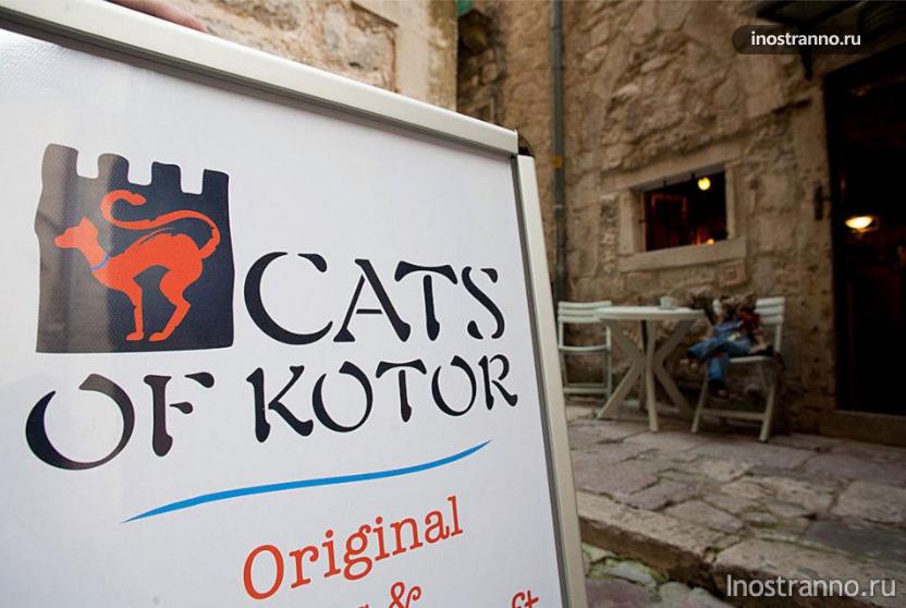 Магазин сувениров котов в Которе