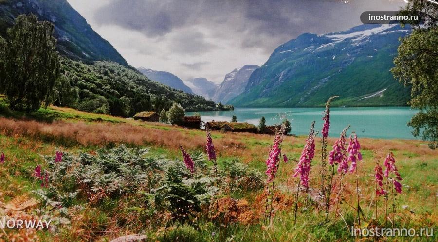 пейзаж норвегии