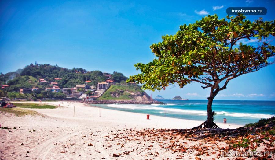 пляж barra рио