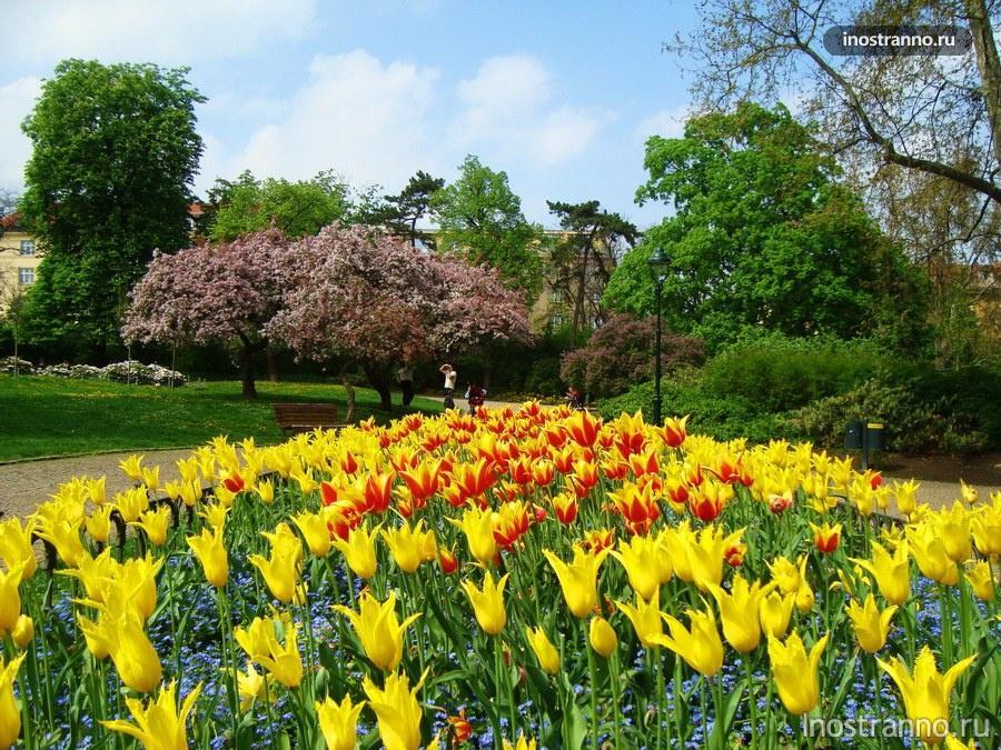 летенские сады - прага