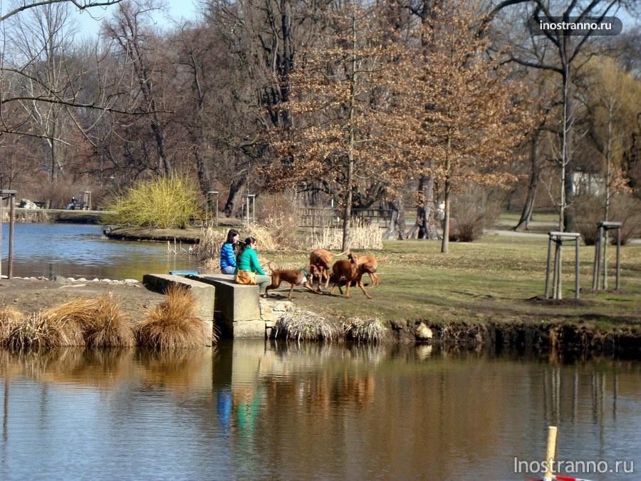 парк Стромовка в Праге