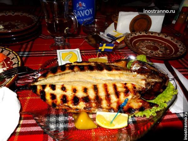 Болгарская рыба пеламида