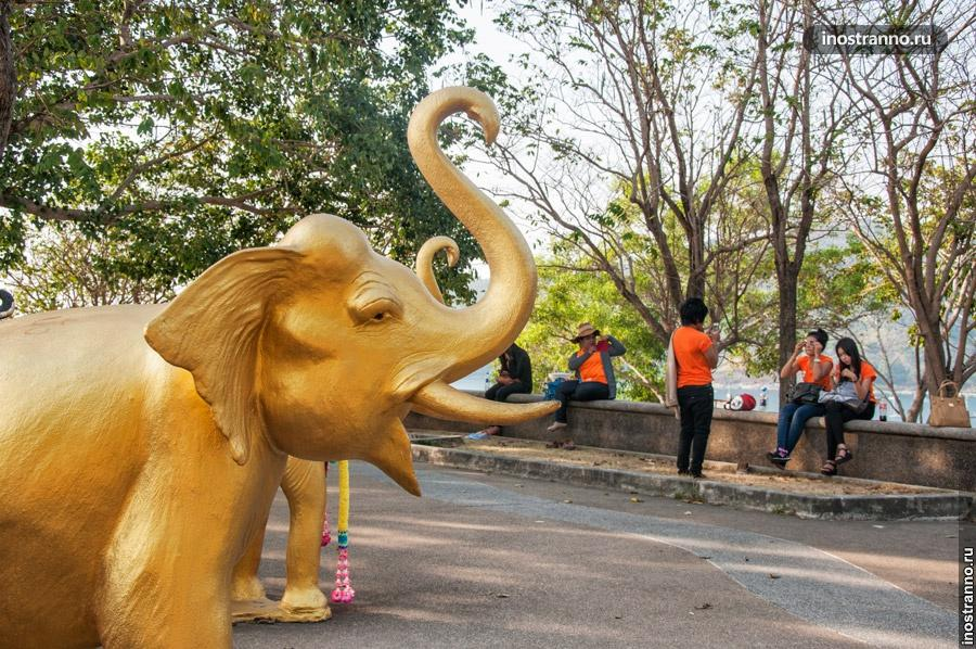 слоны мыса промтеп пхукет