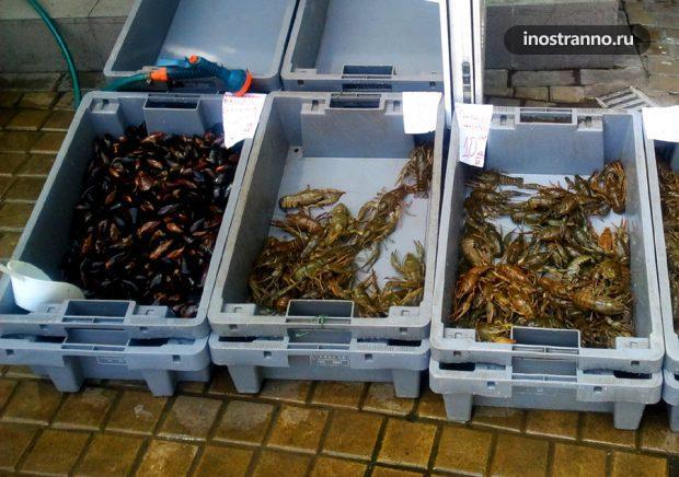 Морепродукты в Болгарии