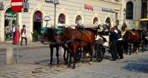 Что посмотреть в Вене – ТОП мест