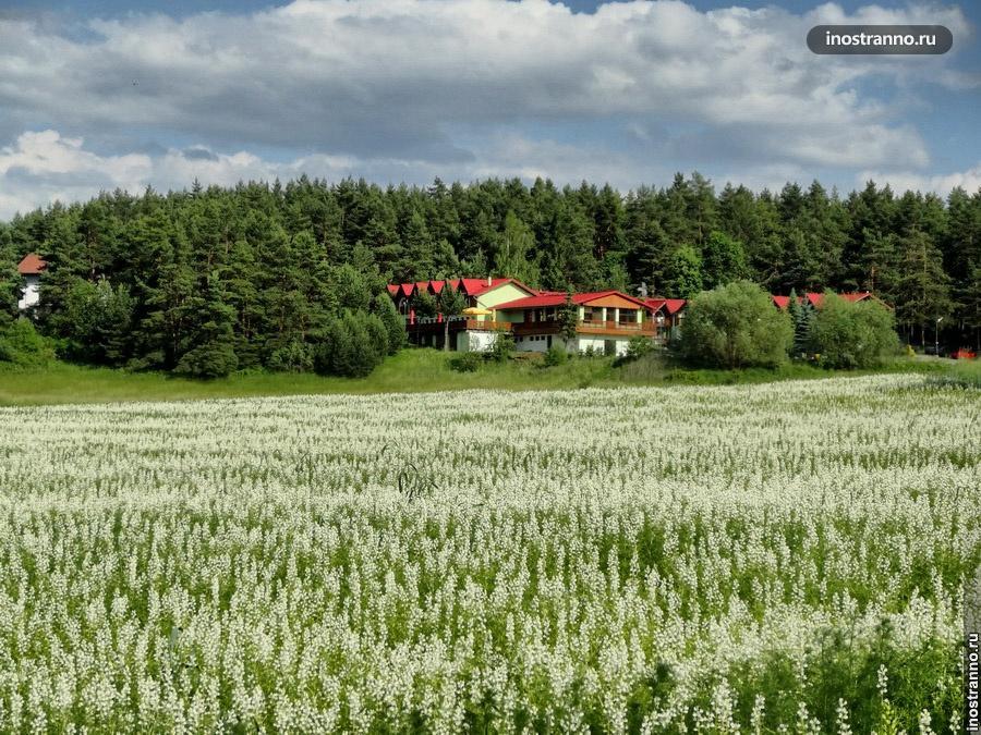 отдых в словацком раю