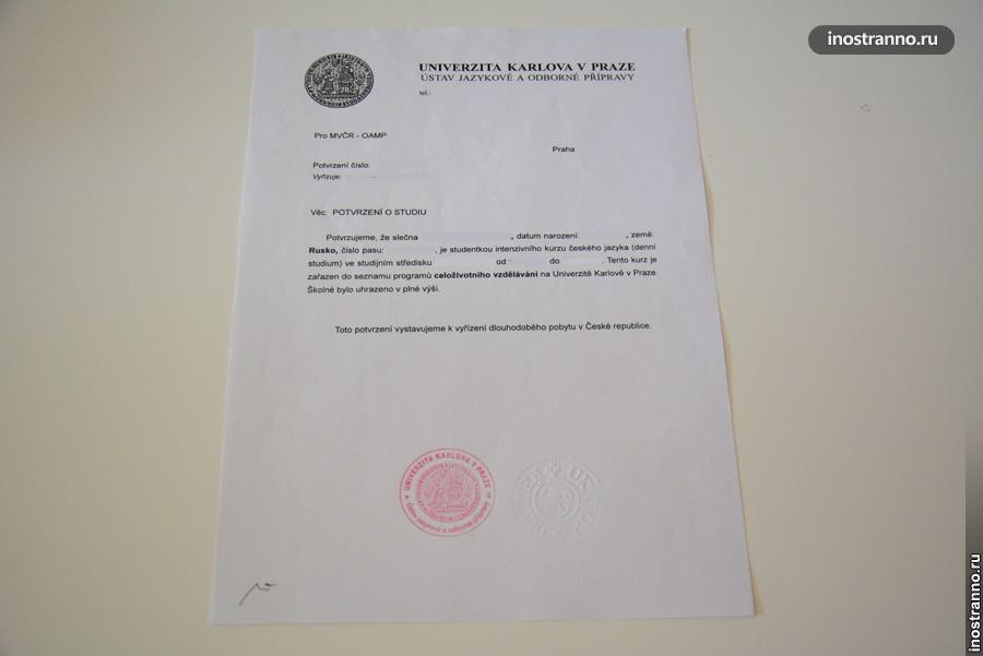 подтверждение об обучении чешского университета