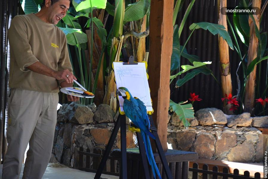 Парк попугаев - Palmitos Park