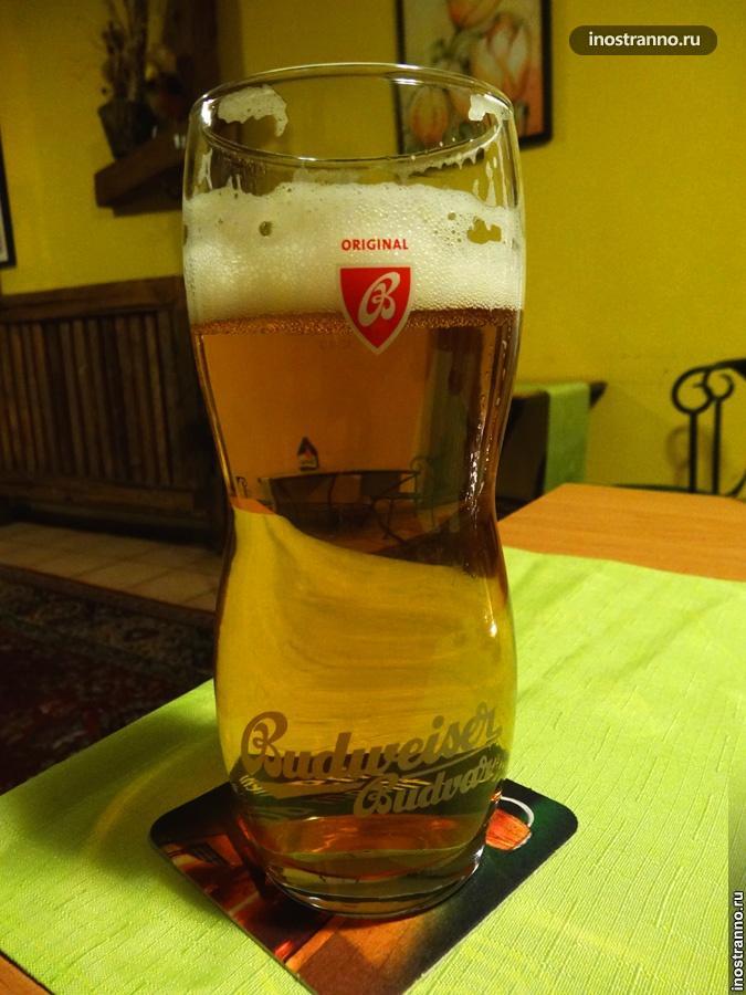 пиво будвайзер в чехии