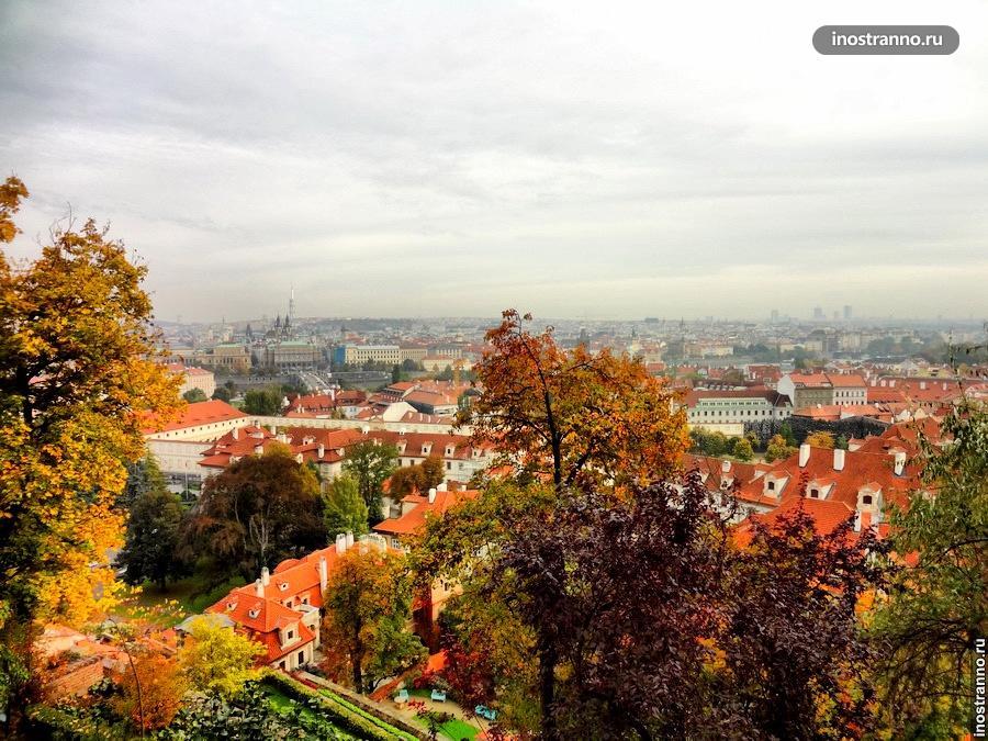 Фюрстенбергские сады