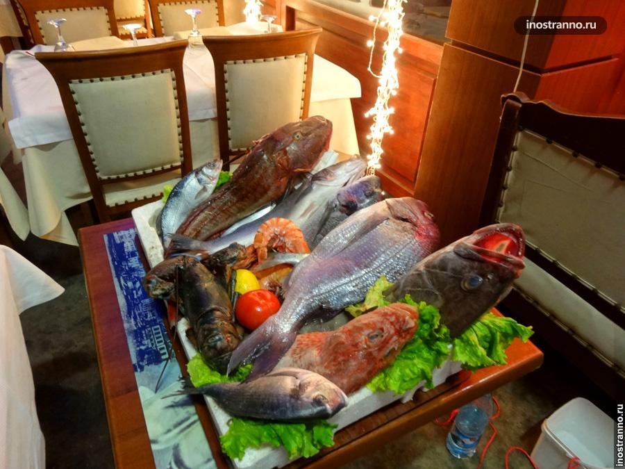 Рыбные рестораны в Стамбуле