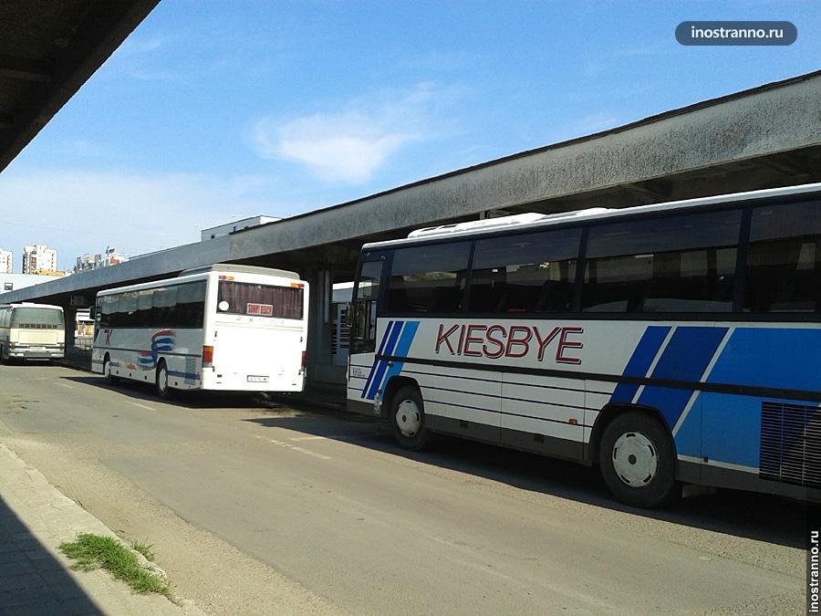 Автобус в аэропорту Бургаса