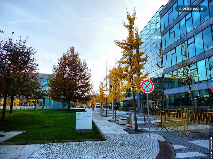 Осень и офисы