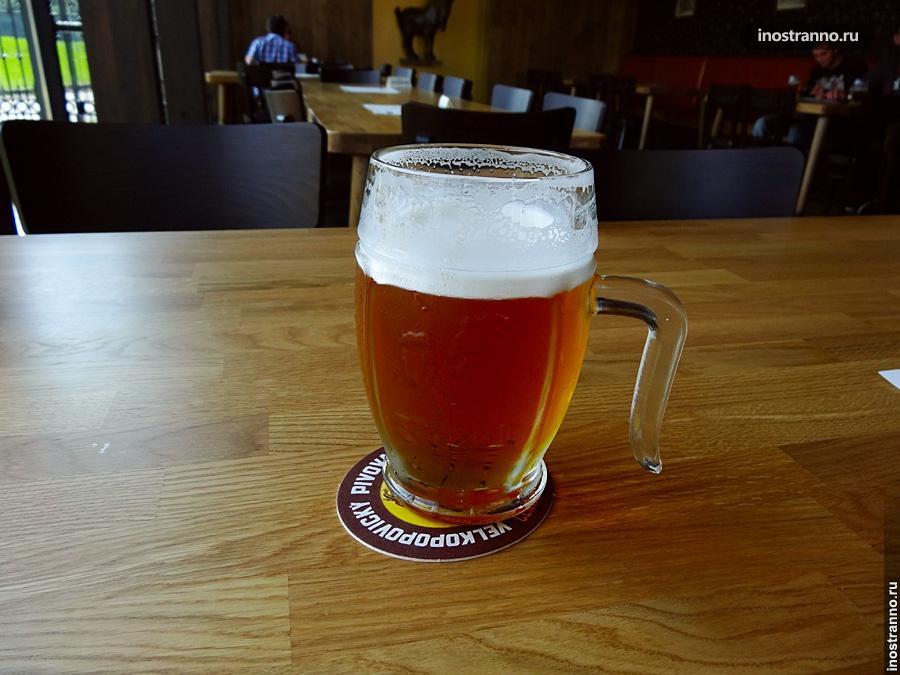 Алкоголь при вождении в Чехии