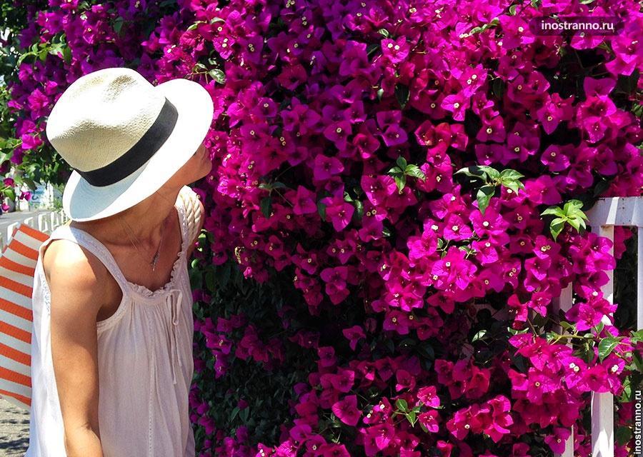 Шляпа панама panama hat