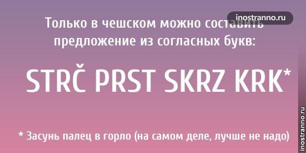 Только в чешском языке