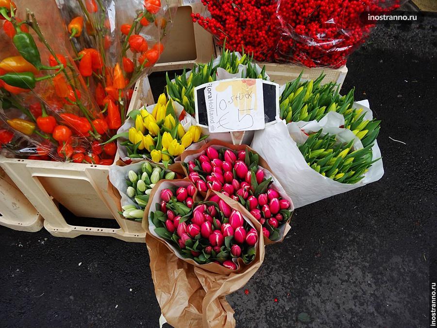 Тюльпаны в Линце