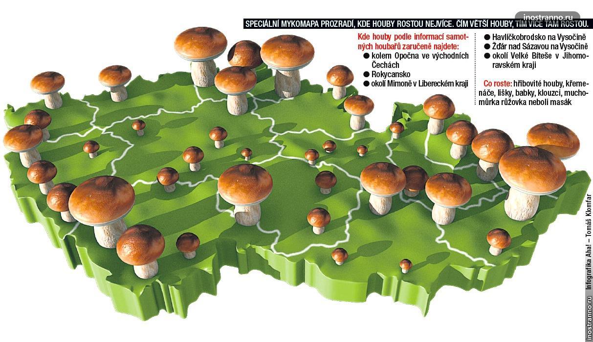 Карта грибные места в Чехии