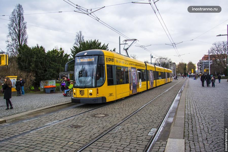 Трамвай Дрездена
