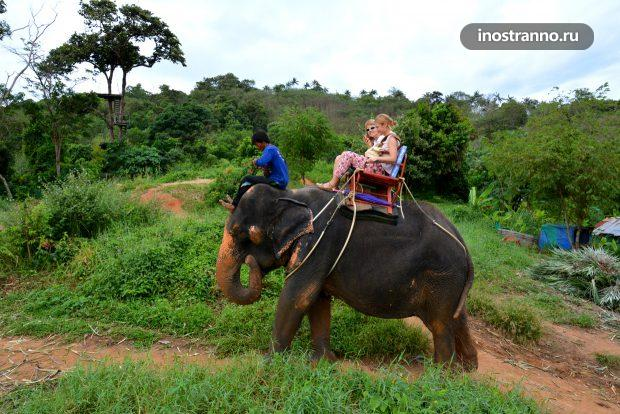 Прогулка на слонах на Пхукете