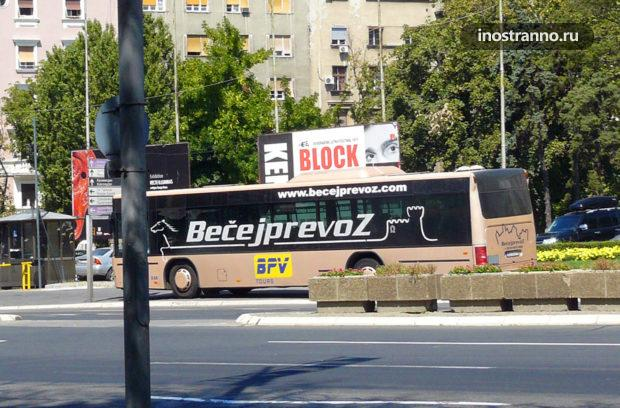 Автобус в Черногории, Подгорица, Тиват, аэропорт