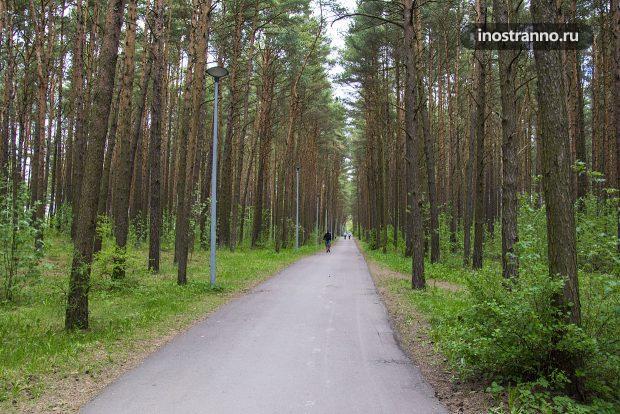 Природа в Эстонии