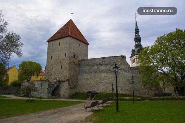 Стены Старого города Таллина