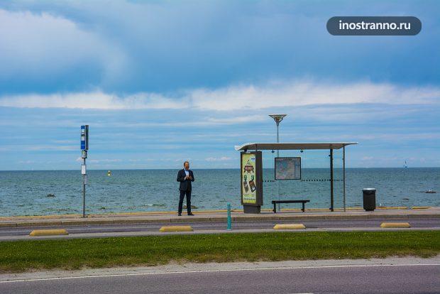 Автобусная остановка в Таллине