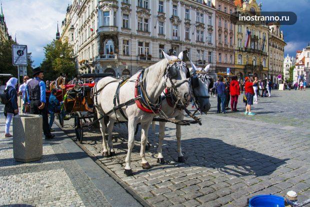 Конная прогулка в Праге