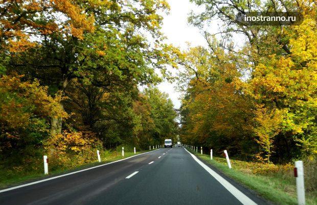 Дорога в Чехии