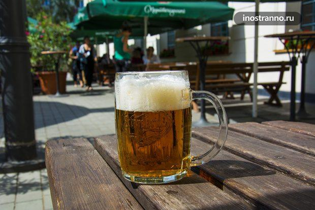 Чешское пиво Старобрно