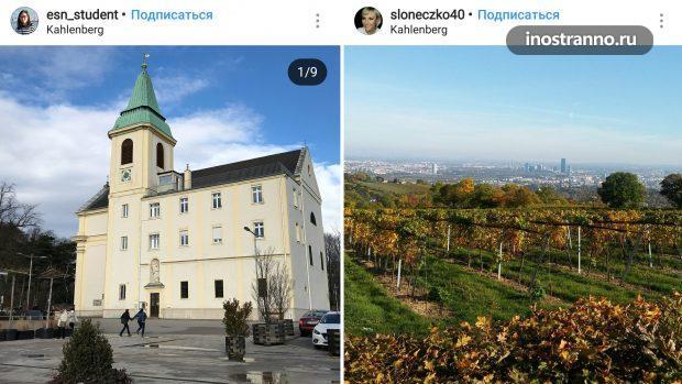 Холм Каленберг смотровая площадка в Вене