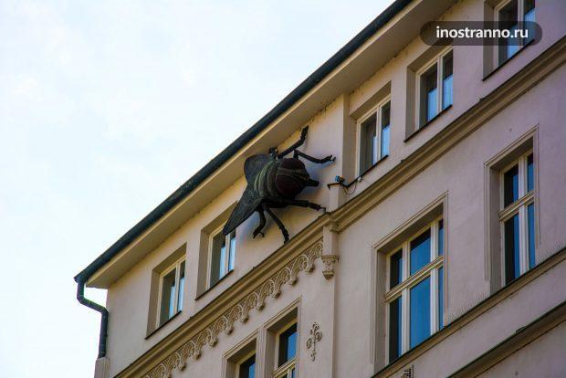 Муха на стене здания
