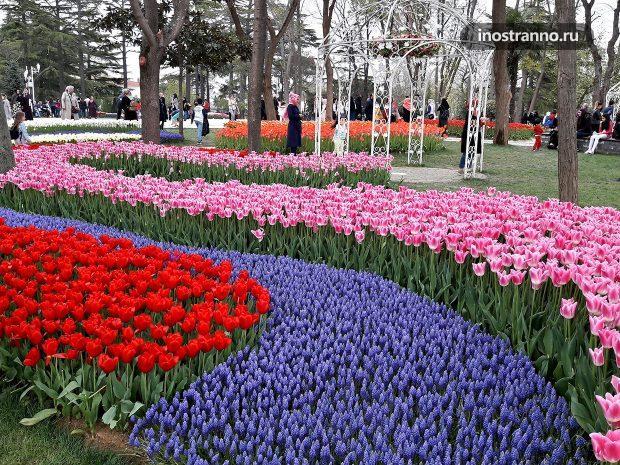 Экскурсия на фестиваль тюльпанов в Стамбуле