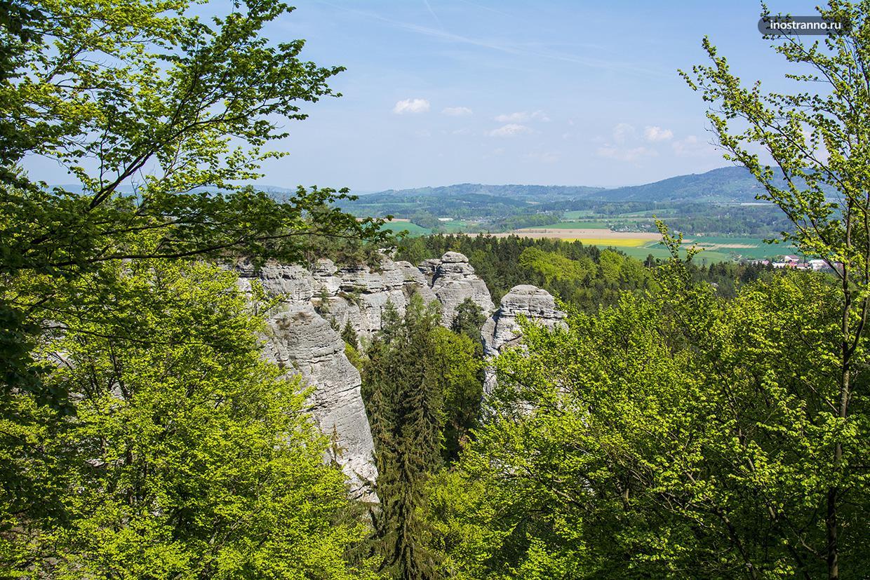 Скалы в национальном парке Чешский рай
