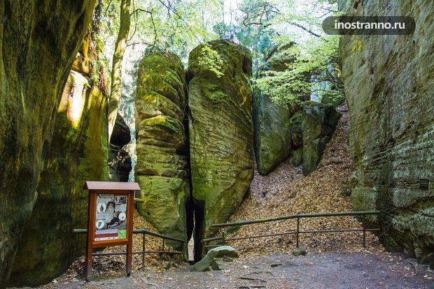 Скалы в национальном парке Чехии
