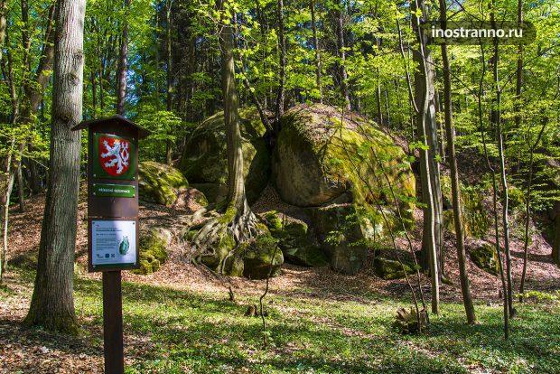 Маршруты в парке Чешский рай